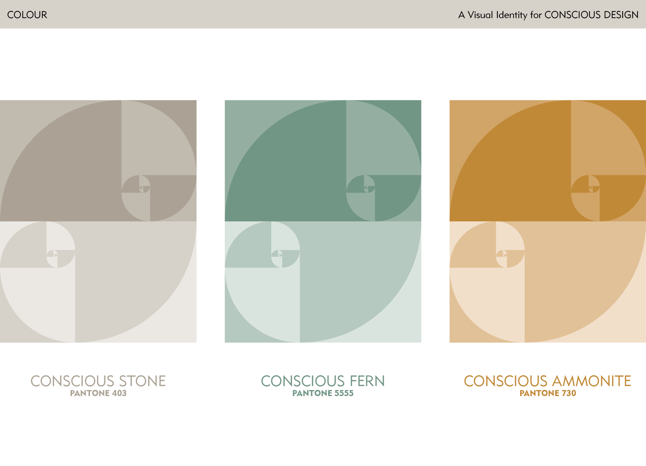 Brand Colour Options with Pattern - Feng Shui Design