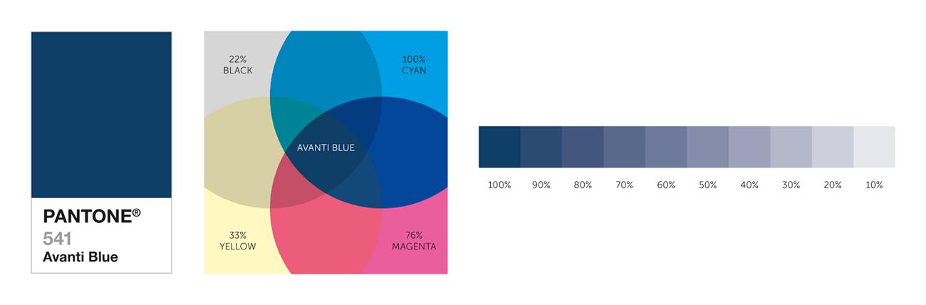 Colour Scheme - Branding